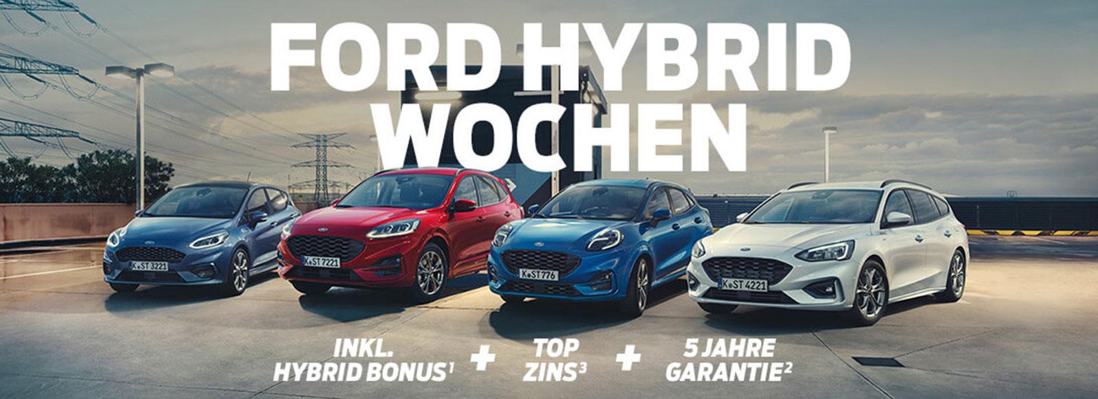 Hybridwochen_Webseite